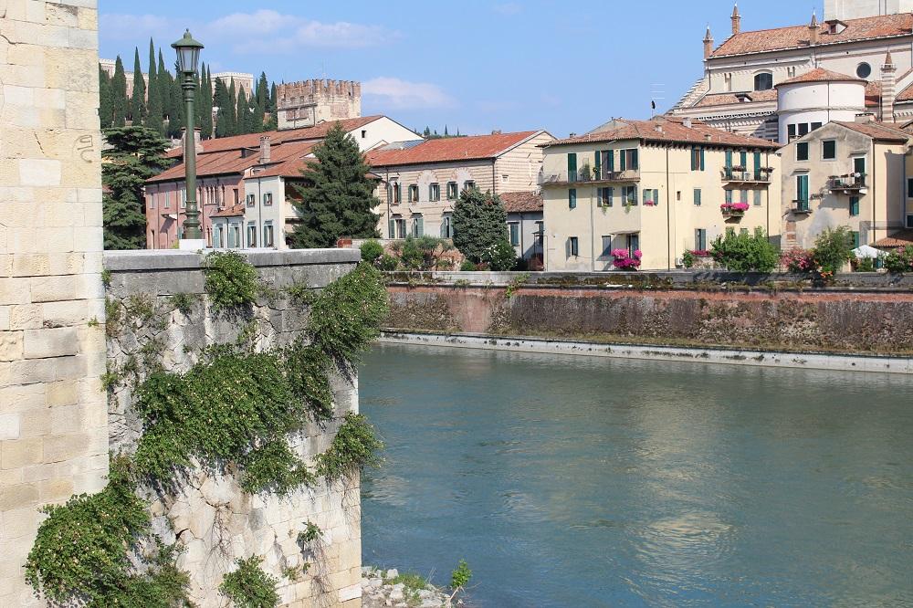 piante di capperi sulle mura attorno Verona