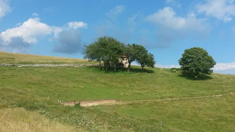 paesaggio estivo della montagna dei veronesi