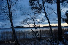 Ritva Sillanmäki-211214 (8 of 31)