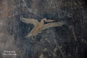 Pompeii (53 of 180)