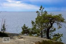 Porkkalanniemi-Finland-04656