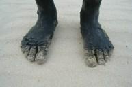 Die Füße der Tochter meiner Freundin ...