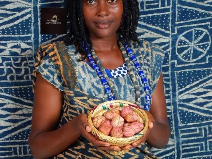 Afrique – Culture LA KOLA: ONTOLOGIE ET COSMOGONIE
