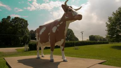 Gertrude the Cow - giant cow statue in Rockford, Illinois