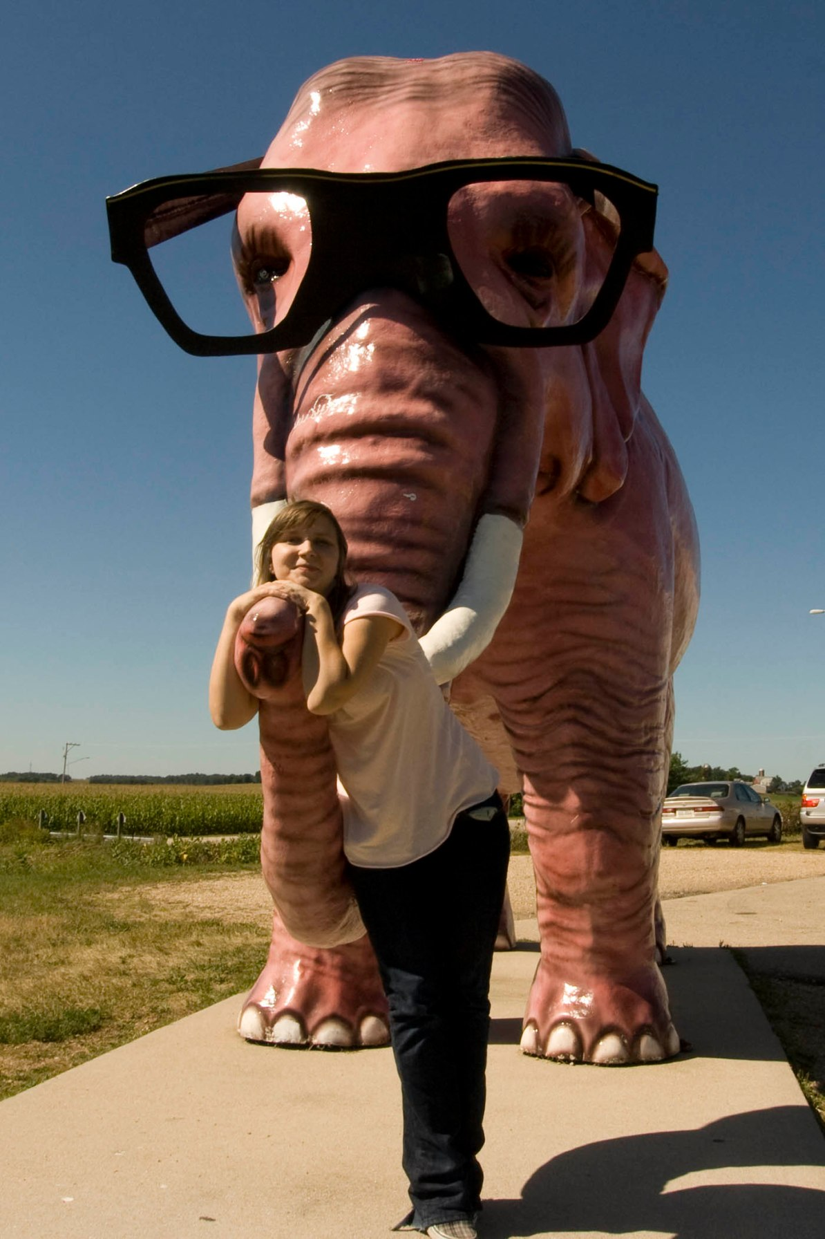 Pink Elephant with Glasses - a roadside attraction in DeForest, Wisconsin