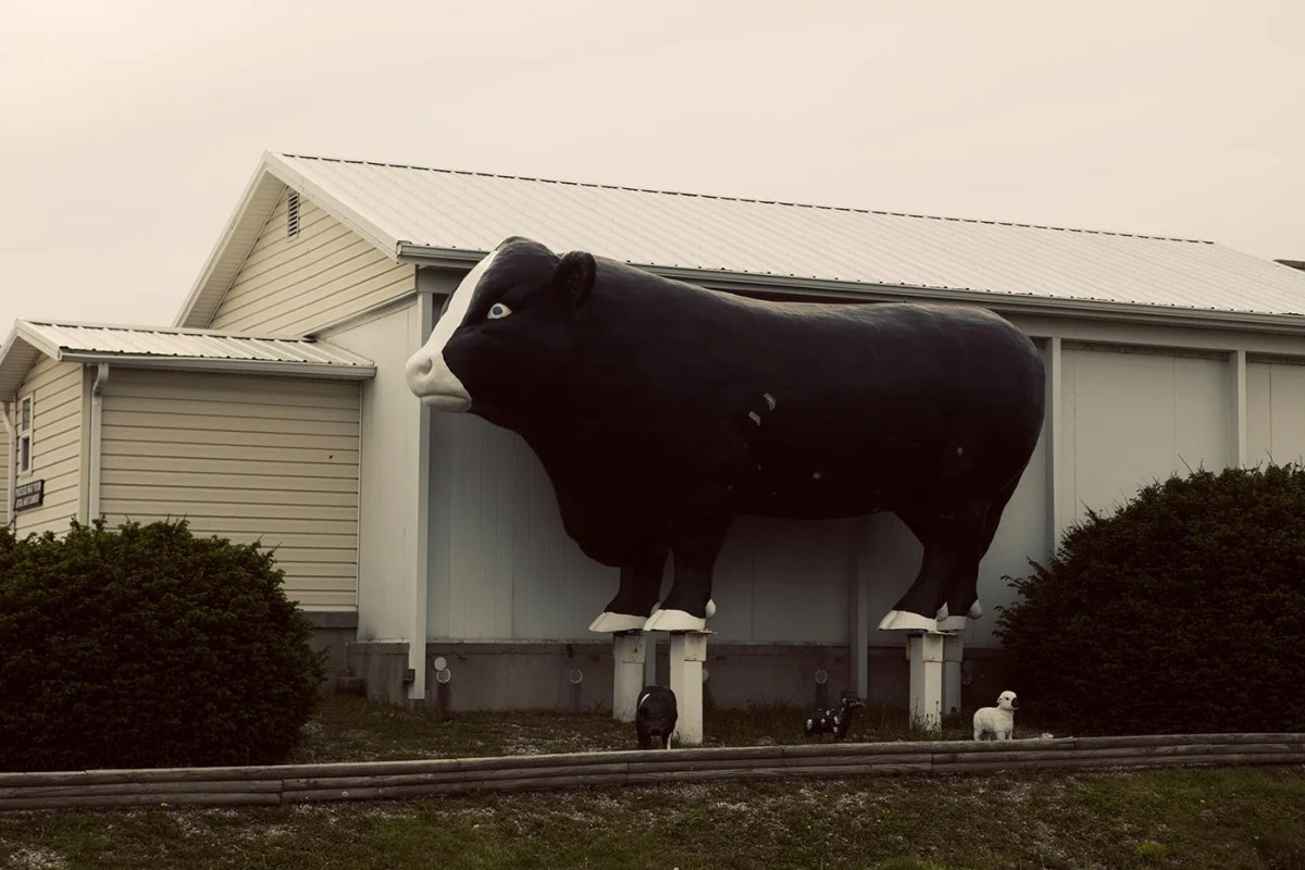 Giant Bull Roadside Attraction in Stewardson, Illinois