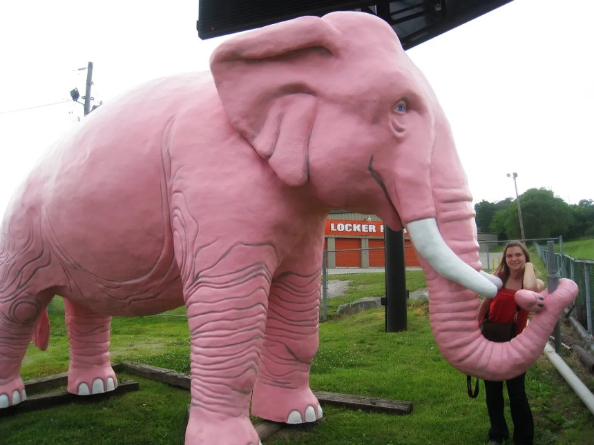 Large Pink Elephant in Fenton, Missouri