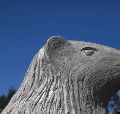 Big Marmot Statue in 100 Mile House, British Columbia, Canada