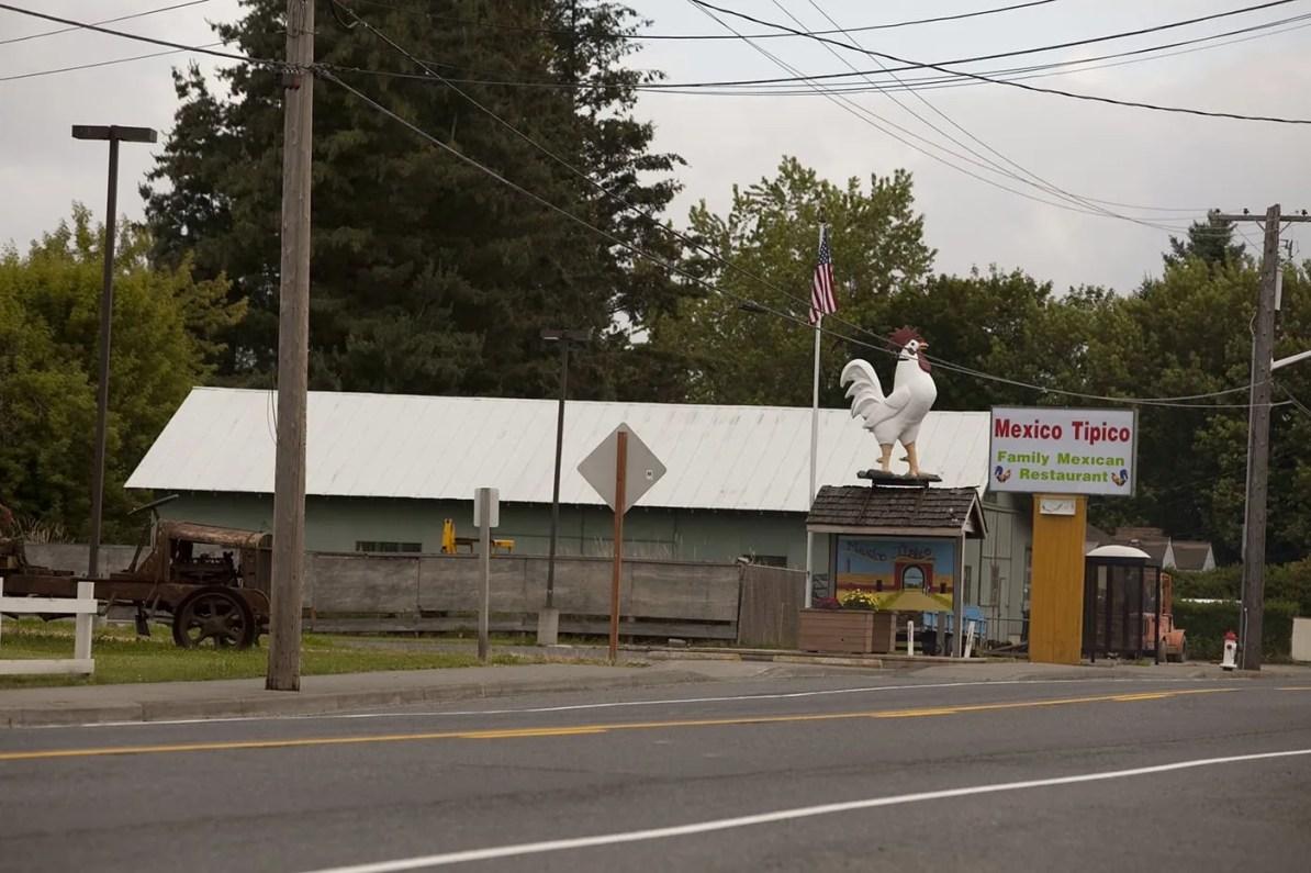 Big Rooster in Nooksack, Washington