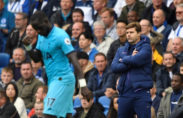 Poch has players he does not want: Levy