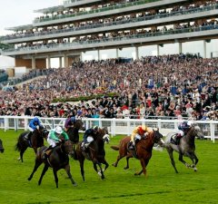 Epsom Derby Odds Best Derby Betting Tips & Odds 2020