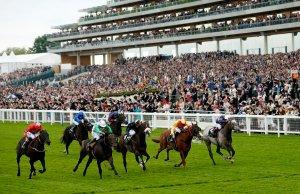 Epsom Derby Odds Best Derby Betting Tips & Odds 2020