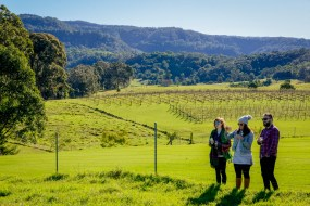 Silos Estate Winter Wine Festival Gallery