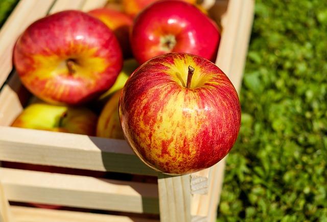 Hollandse kost: appeltjes gevuld met kruidig gehakt