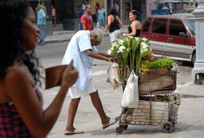 Una mujer mayor vende flores cerca de la calle Galeano, el 15 de Octubre de 2010, La Habana, Cuba. Foto: Calixto N. Llanes/Juventud Rebelde (CUBA)