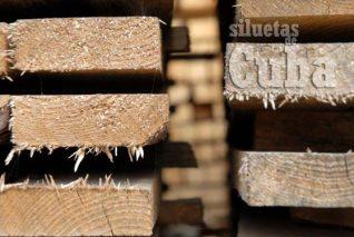 La madera es secadas al aire libre, el 14 de Enero de 2011, Pinar del Río, Cuba. Foto: Calixto N. Llanes/Juventud Rebelde (CUBA)