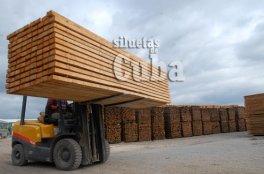 Una grúa transporta la madera cortada y apilada, el 14 de Enero de 2011, Pinar del Río, Cuba. Foto: Calixto N. Llanes/Juventud Rebelde (CUBA)