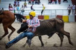 Vaqueros compiten en el derribo de reses a mano en la final del Campeonato Nacional de Rodeo entre Villa Clara y Sancti Spiritus, durante la Feria Internacional Agroindustrial Alimentaria (FIAGROP) de Rancho Boyeros el martes 18 de marzo de 2014 en La Habana, Cuba. FOTO de Calixto N. Llanes/Juventud Rebelde (CUBA)