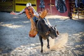 Vaquero compite en la monta de toros en el Torneo Internacional de Rodeo y Coleo, durante la Feria Internacional Agroindustrial Alimentaria (FIAGROP) de Rancho Boyeros el viernes 21 de marzo de 2014 en La Habana, Cuba. FOTO de Calixto N. Llanes/Juventud Rebelde (CUBA)