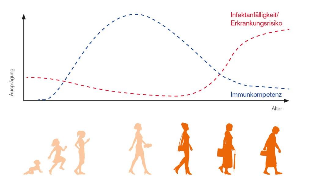 Mit dem Alter lässt das Immunsystems nach, und die Anfälligkeit für Infekte und Erkrankungen steigt.