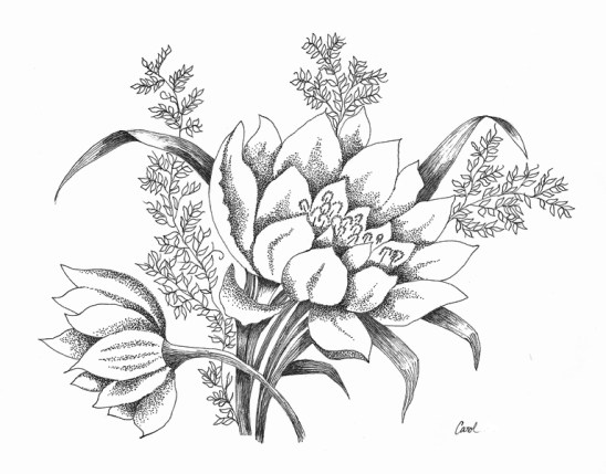Flowers in Pen and Ink