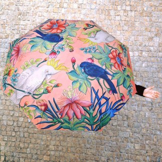 Anuschka Art Umbrellas