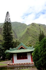 Iao valley state park 059