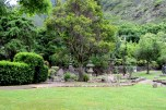 Iao valley state park 101