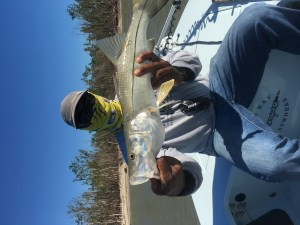 Flamingo - saltwater fishing report