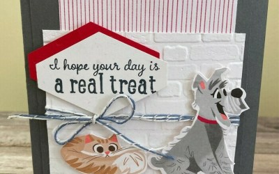 Pampered Pets that are irresistibly cute!