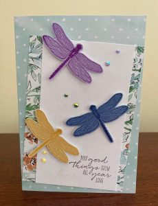 Shimmery Dragonflies