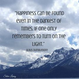https://silverliningcommunity.wordpress.com/2016/03/22/turn-the-light-on-in-order-to-find-happiness/