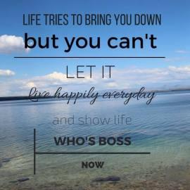 https://silverliningcommunity.wordpress.com/2016/02/09/show-life-who-is-boss/