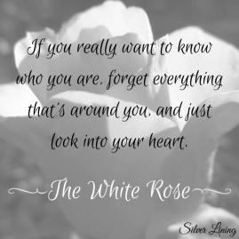 https://silverliningcommunity.wordpress.com/2016/07/20/the-white-rose/