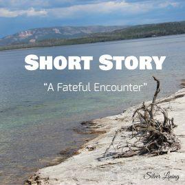 https://silverliningcommunity.wordpress.com/2016/08/01/a-fateful-encounter/
