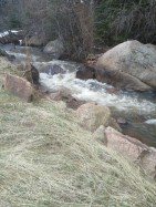 Babbling Buffalo Creek