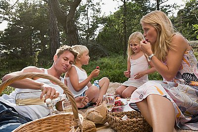 семеен пикник
