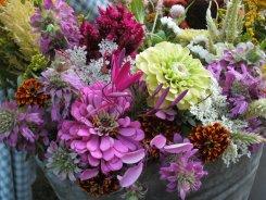 purple zinnia bouquet