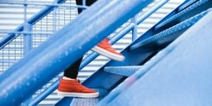 7 Schritte zum Erfolg