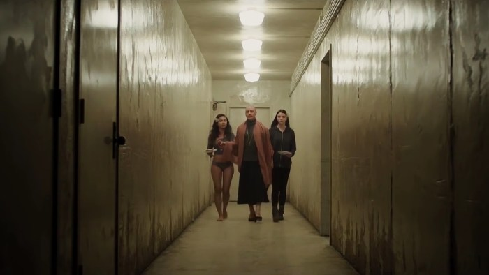 Haley Lu Richardson-Split-movie review-2017-theater whore-dante ross-danterants-blogspot-com