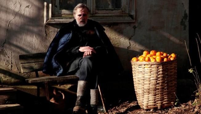mandariinid_tangerines_still.jpg