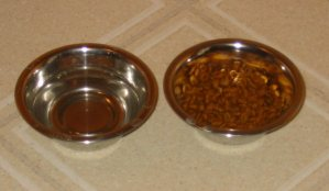 Image of cat supplies clean dishes