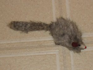 Image of cat supplies mouse toys