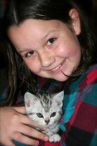 Image of Girl holding American shorthair silver tabby kitten