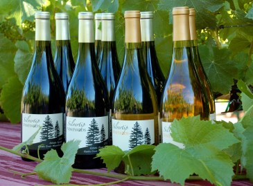 Silvertip Wines