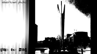 Crno i bijelo foto 23jpg