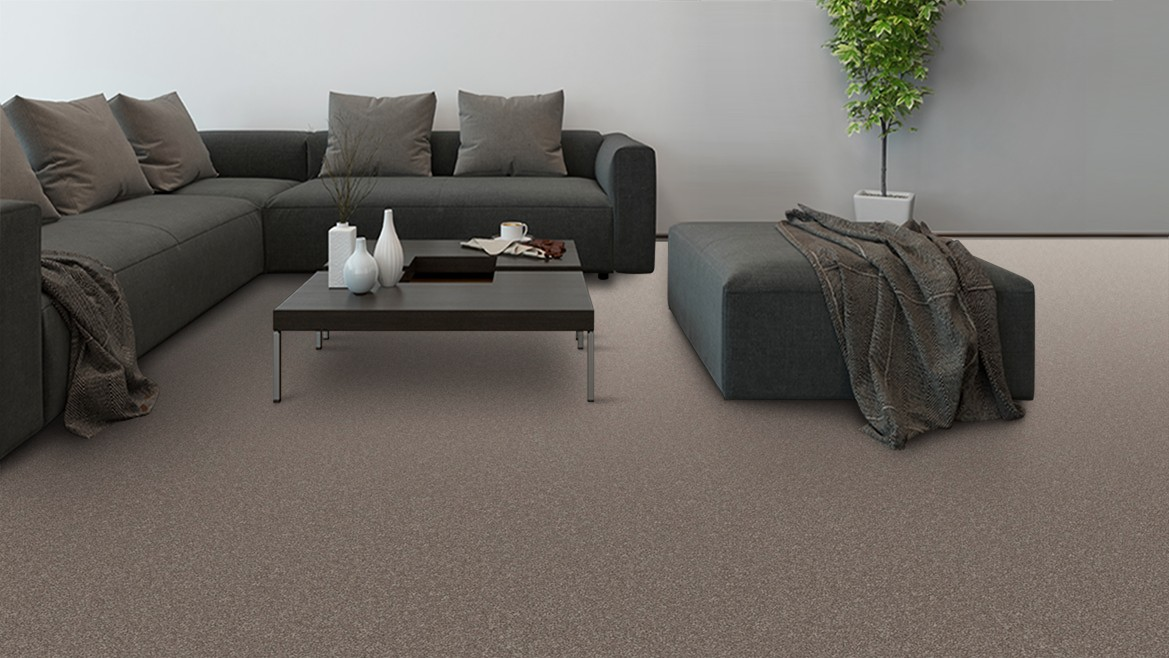 Things to Consider with Carpet