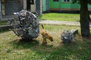 silvialorenz_kovitlaci_dog_web