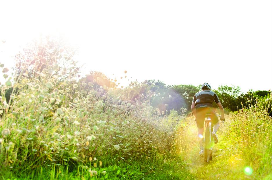 mountain-bike-rider-in-a-field