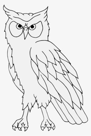 Mewarnai Gambar Sketsa Tato Burung Hantu Terbaru Kataucap